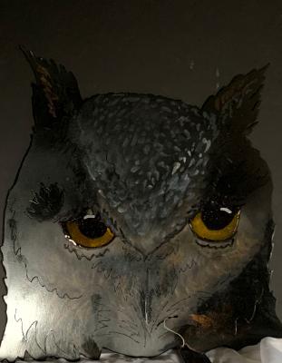 Owl full faced