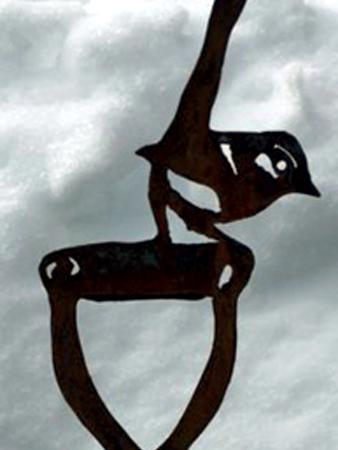 Bird on Shovel Handle